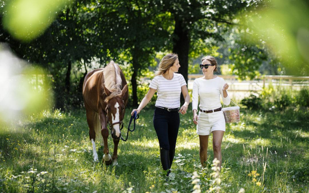 photographe_paris_fontainebleau_equitation_sport_lifestyle_nicolas_jacquemin_hdcp